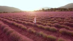 Young Beautiful Woman Walking Through Lavender Field At Sunset Aroma Treatment Stock Footage