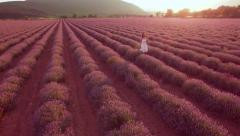 Beautiful Young Innocent Woman White Dress Walking Through Lavender Field Beauty Stock Footage