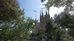 Sagrada Familia seen behind the trees in Barcelona Stock Footage