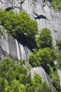 Italian Alps in Summer Stock Photos