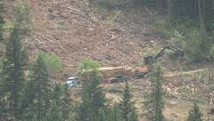 Logging truck leaves, skidder moves off, extreme long lens Stock Footage