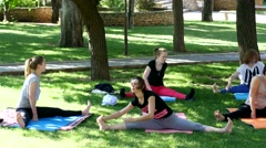 Group of people do morning yoga exercise in a green park Stock Footage