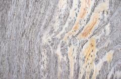Gray wood floor texture - stock photo