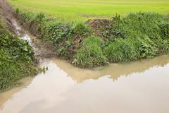 Full water ditch in a field after torrential rain Stock Photos