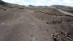 Aerial video footage of the La Geria vineyard on black volcanic Stock Footage