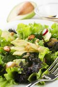 Salad with avocado close up Stock Photos