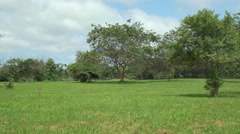 View of Fausto Llerena Breeding Center, Santa Cruz Island, Galapagos, Ecuador Stock Footage