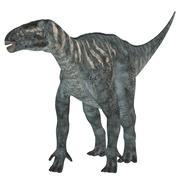 Iguanodon Herbivore Dinosaur Stock Illustration