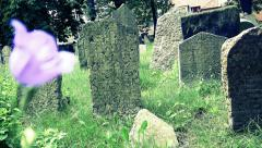 Jewish cemetery in Prague Stock Footage