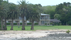 View of palm trees in front of a villa in Bay of Islands, North Island, New - stock footage