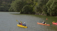 Tourists kayaking in sea near Bay of Islands, New Zealand Stock Footage