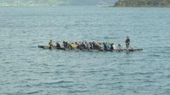 People kayaking in sea, Wellington, New Zealand Stock Footage