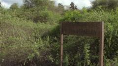 Old Van Straelen signboard in woods, Santa Cruz Island, Galapagos, Ecuador Stock Footage