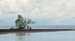 Tourists on beach at Point Venus, Papeete, Tahiti, French Polynesia Stock Footage