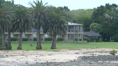 View of palm trees in front of a villa in Bay of Islands, North Island, New Stock Footage