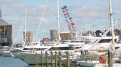 Yachts moored on harbor, Auckland, New Zealand Stock Footage