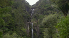 View of waterfall in forest, Auckland, North Island, New Zealand Stock Footage