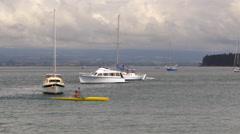 Man kayaking in sea, Tauranga, New Zealand Stock Footage