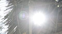 Sun flare through a palm shade Stock Footage