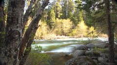 Flowing Merced River in Yosemite National Park, California, USA Stock Footage