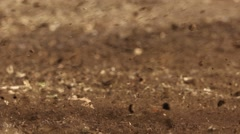Dirt flying on motocross course Stock Footage
