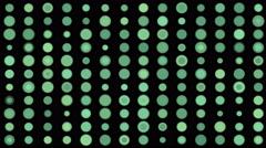 4k Circle dot array matrix mosaics candy,scan big data sorting analysis gene. Stock Footage