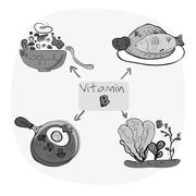Healthy ABC: Vitamins of B - group - B 2, B 5, B 6, B 9 - stock illustration