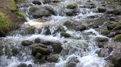 Stock Video Footage of Mountain stream in the forest LOOP. UHD 4K stock footage