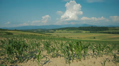 Agricultural landscape with clouds 2 Stock Footage
