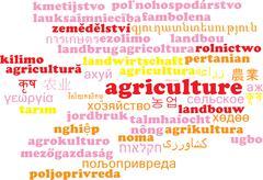Agriculture multilanguage wordcloud background concept - stock illustration