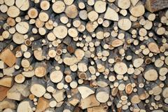 wood of a Woodshed for ecological heating - stock photo