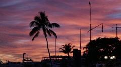 Beautiful sky in Miami Stock Footage