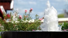 Water fountain close to the flower Stock Footage