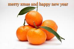 Xmas card with oranges - stock photo