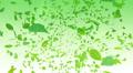 Green Leaf front Ag 4K Footage