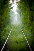 Love tunnel in Romania - stock photo