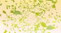 Green Leaf front Ar 4K Footage
