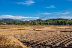 soil on field agriculture in thailand country - stock photo