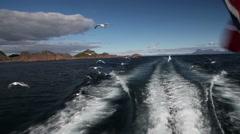Many birds behind a fishing boat in Lofoten Stock Footage