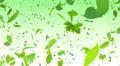 Green Leaf tornado Ag 4K Footage