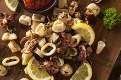 Homemade Fresh Grilled Calamari - stock photo