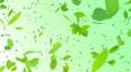 Green Leaf tornado Cg 4K 4k or 4k+ Resolution