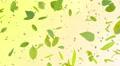Green Leaf tornado Dr 4K Footage