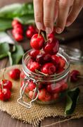 Freshly picked cherries - stock photo