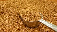 Stock Photo of Buckwheat groats in bulk closeup