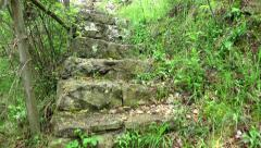 Walking up the stone steps on a rainforest footpath. UHD 4K steadycam stock f Stock Footage