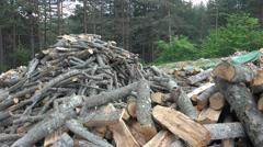 Dry firewood. 4k uhd steadycam stock video - stock footage