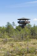 People on watch tower of Viru bog Stock Photos
