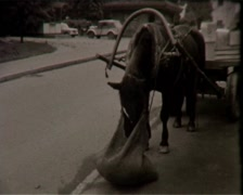 View on the Streets (vintage 8mm film home movie) - stock footage