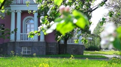 Palace garden in summer city Stock Footage